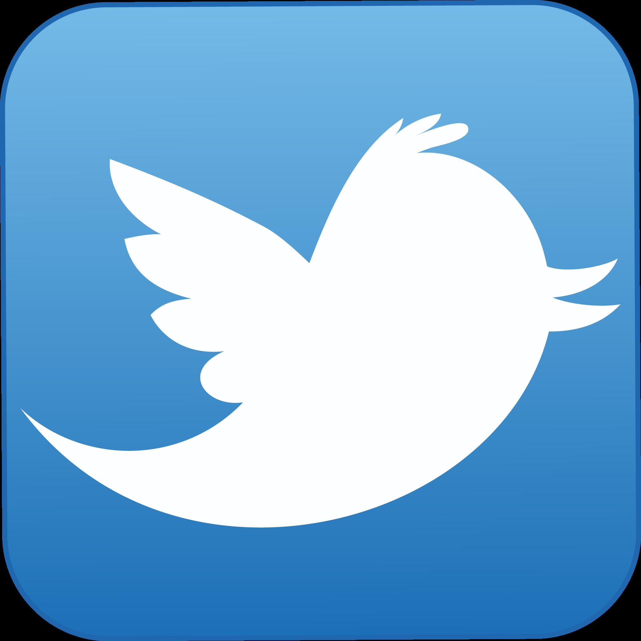 twitter giriş yer boyası